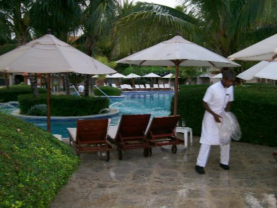 Dreams Palm Beach Punta Cana: hard workers . .
