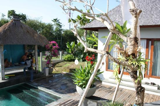 Jabunami Villa Canggu Bali : After the massage: freshly prepared calamari fritos - to die for...