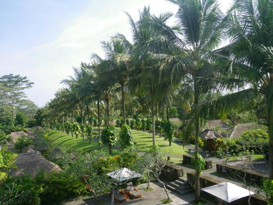 Maya Ubud Resort & Spa: Maya Ubud Resort & Spa Bali 