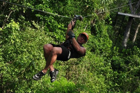 Selvatica Canopy Expedition and Adventure Tour: Zipline