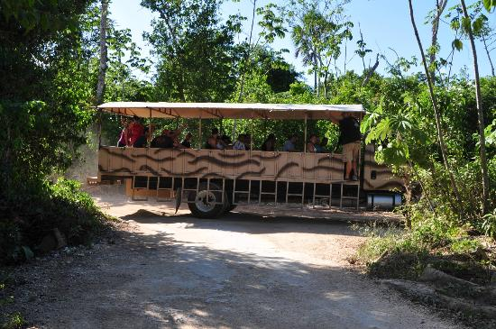Selvatica: The military bus - it's cool...but damn that road is BUMPY