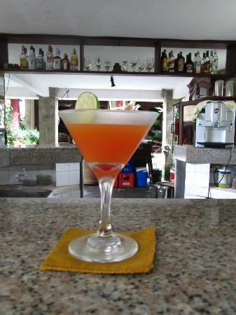 Tamukami Hotel: Wellcome Drink