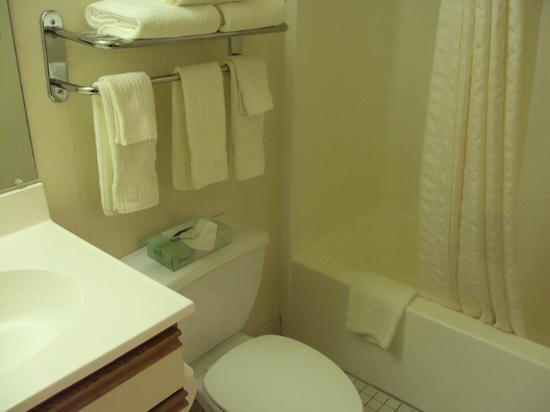 Hawthorn Suites by Wyndham Charlotte/Executive Park: Bathroom