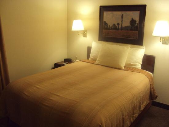 Hawthorn Suites by Wyndham Charlotte/Executive Park: Queen bedroom