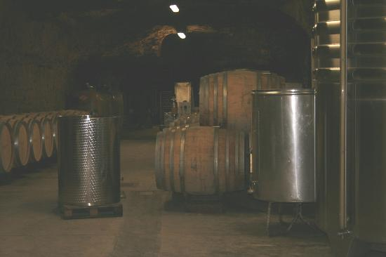 Chateau Gaudrelle, Vins de Vouvray : The cellars of Chateau Gaudrelle,Vouvray