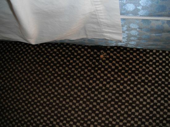 Inlet Tower  Hotel & Suites: Der Schmutz beim ersten Aufenthalt. Wurde die ganzen 4 Tage nicht gereinigt.