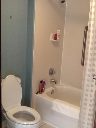 Hyatt Place Richmond/Chester : Dingy bathroom...art had fallen off the wall.