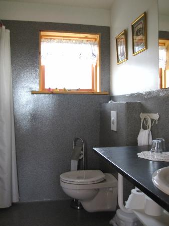 Guesthouse at Hestheimar : Baño