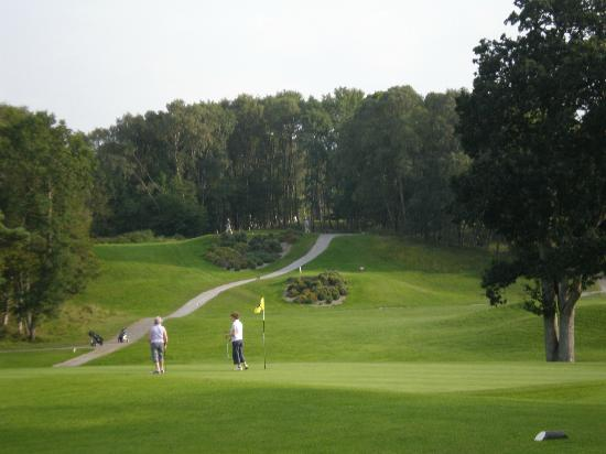 Murrays Bed & Breakfast: Portumna Golf Course