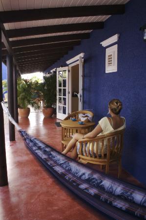 Blachi Koko Apartments Bonaire照片