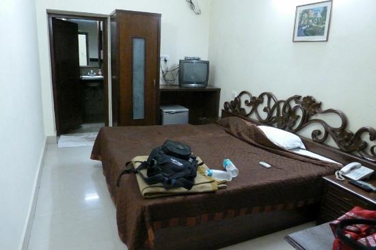Vivek Hotel: room 102