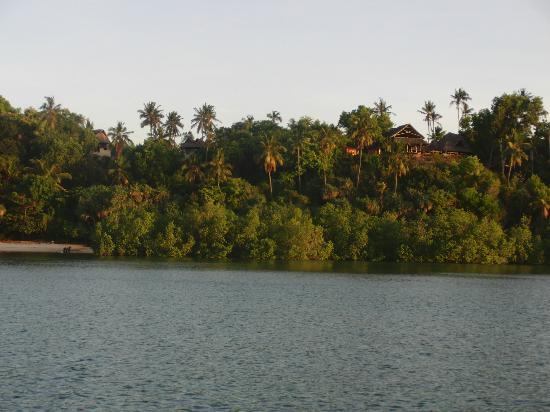 Whale Shark Lodge: View of lodge