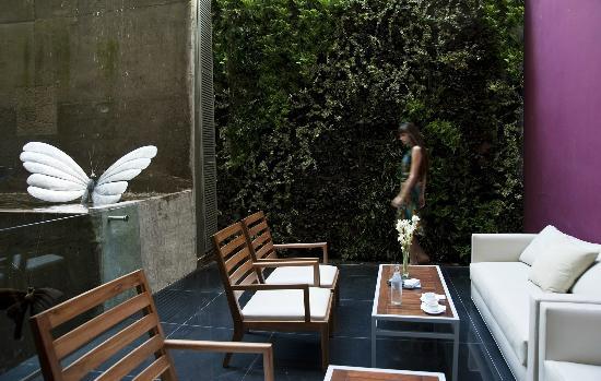 ميو بيونس آيريس هوتل: Jardin vertical