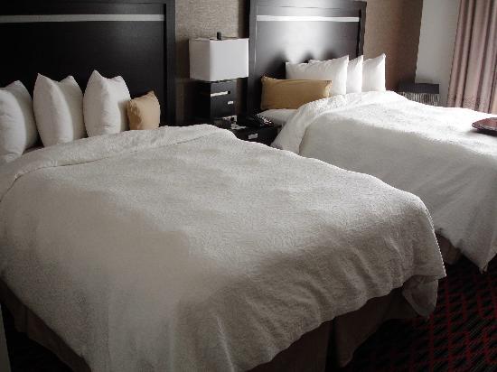 Hampton Inn & Suites Houston/League City: 2 Queens and no dips!