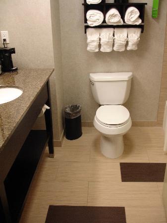 Hampton Inn & Suites Houston/League City: Clean toilet and tub