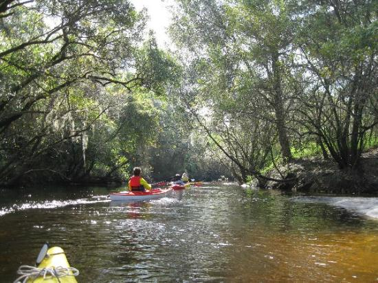 Wimauma, FL: Little Manatee River