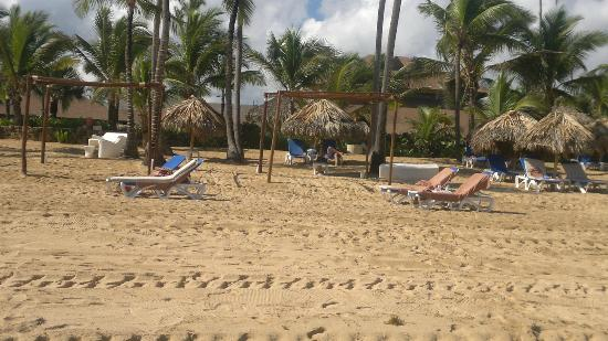 Excellence Punta Cana: playa