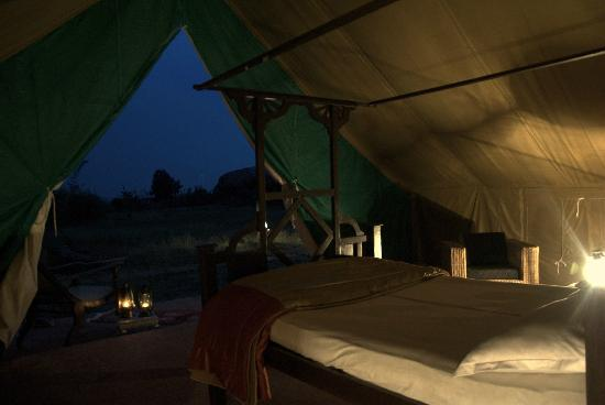 The Grass Walk resort english tents & english tents - Picture of The Grass Walk resort Andhra Pradesh ...