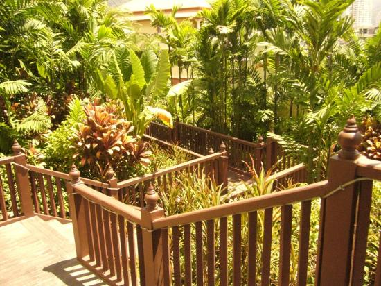 Novotel Phuket Resort: garden in hotel