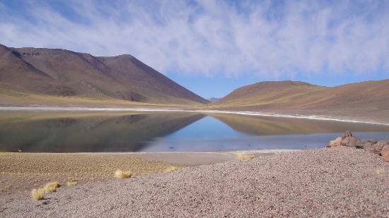 Lagunas Miscanti y Miniques: Lagunas Altiplânicas