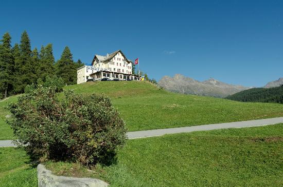 هوتل فالدهاوز آم سي: Hotel Waldhaus am See 
