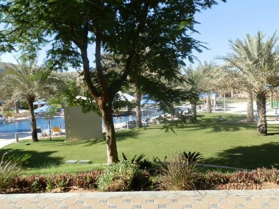 Mafraq Hotel Abu Dhabi: view of pool and gardens from room