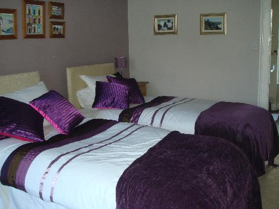 White Hall Bed & Breakfast: Skirrid twin or large double