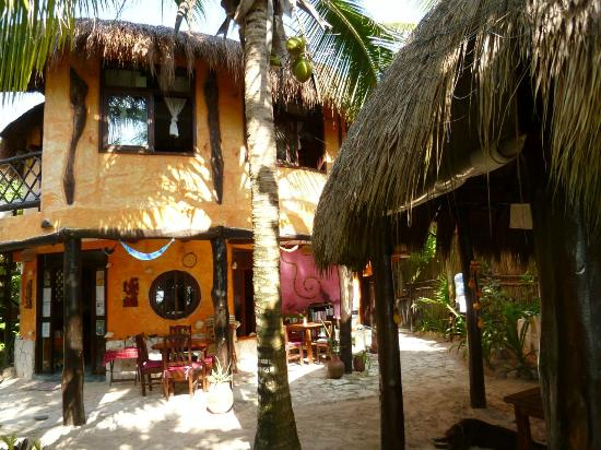 Posada Ecologica Dos Ceibas: the restaurant area and reception entrance