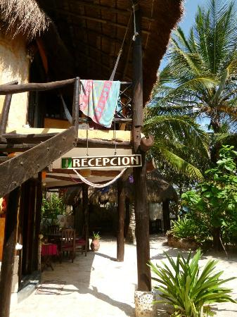 Posada Ecologica Dos Ceibas: the reception and the restaurant area