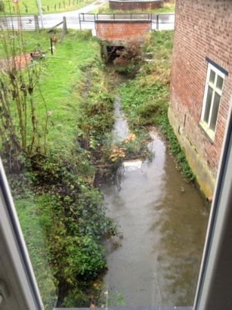 Molen ter Walle Bed & Breakfast: stream under dining room