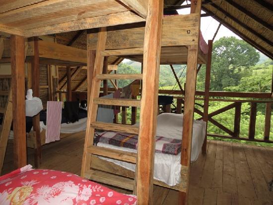 Utopia Eco Hotel Updated 2018 Prices Reviews Photos Guatemala Lanquin Ranch Tripadvisor