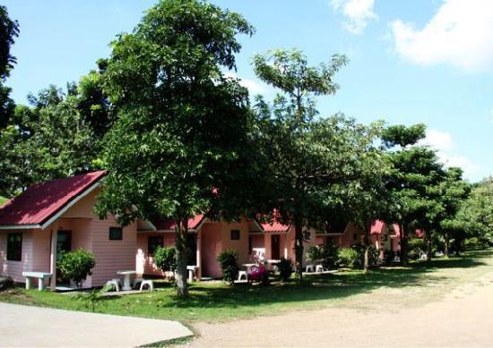 A & B Resort
