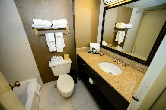 Embassy Suites by Hilton Baton Rouge: Bathroom