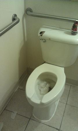 Baymont Inn & Suites Statesboro: Broken Toilet Tank and stuffed up toilet in Hotel Lobby