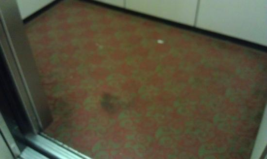 Baymont Inn & Suites Statesboro: Filthy and smelly Carpet in both Elevators