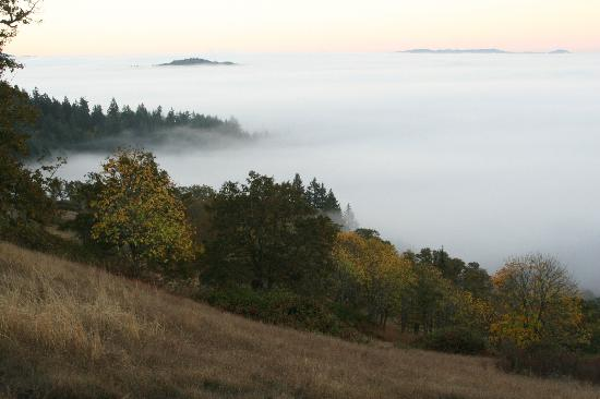 Eugene, Oregón: Autumn morning above the fog.