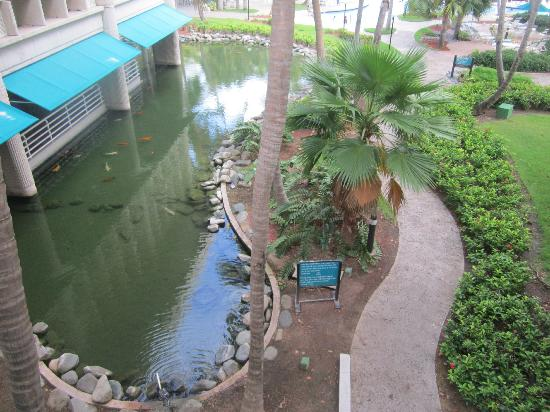 Hilton Ponce Golf & Casino Resort: Parte de sus jardines.