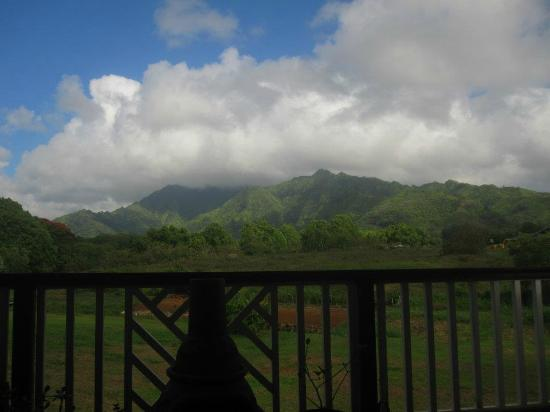 Makaleha Bed and Coffee: good morning Kauai