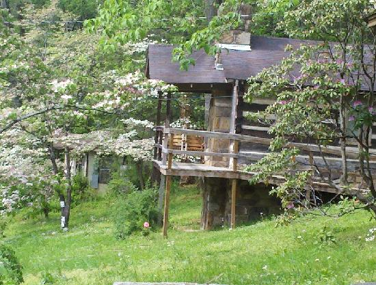 Brevard Inn and Cabins: This is the Big Bear Cabin