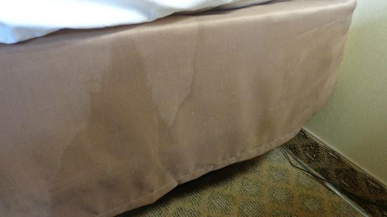 Quality Inn & Suites Fairview : Bedskirt