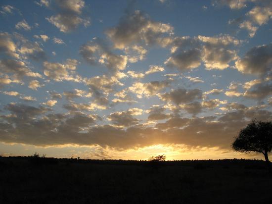 Sarova Mara Game Camp: Sunrise