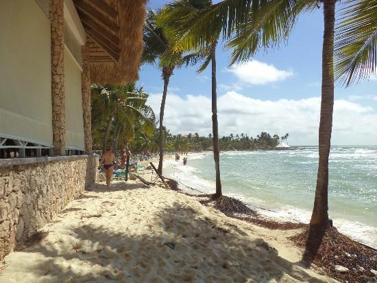 Viva Wyndham Dominicus Beach: Playa colindante con comedor