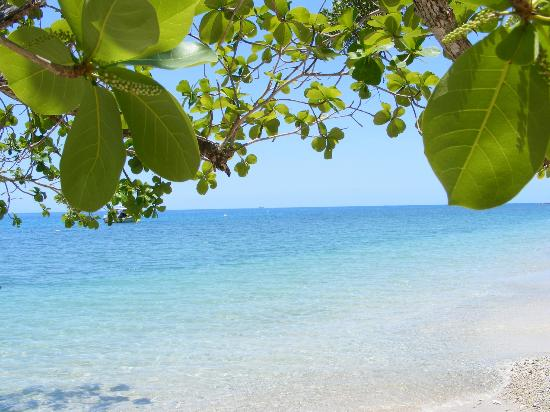 Fitzroy Island Resort: .