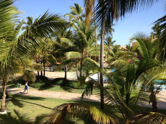 Caribe Club Princess Beach Resort & Spa: out