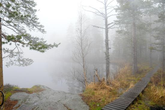 Ornskoldsvik, السويد: Hoga Kusten - Skuleskogen National Park 