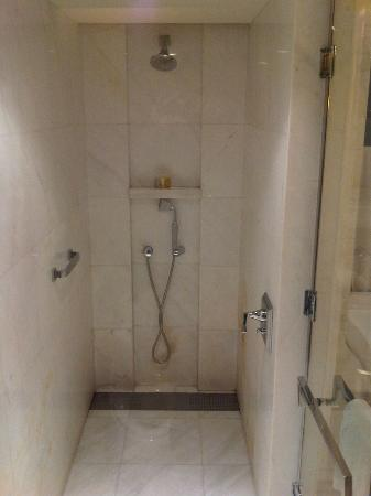 The Astor Hotel, A Luxury Collection Hotel: walk in shower