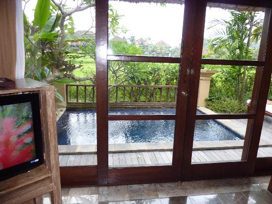 Komaneka at Monkey Forest: view from our room, villa pool