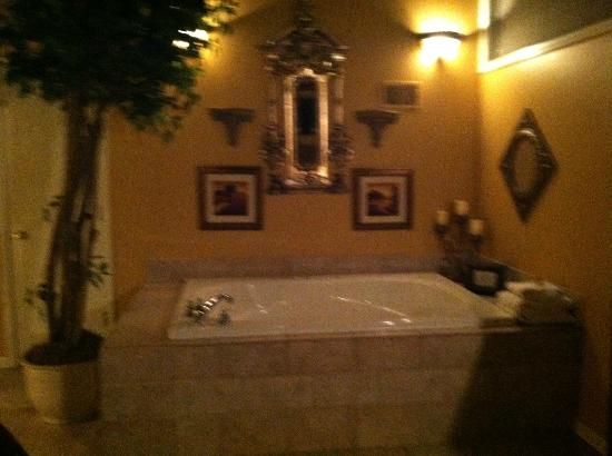 Castle in the Country Bed & Breakfast Inn: Jacuzzi in the King Arthur Suite