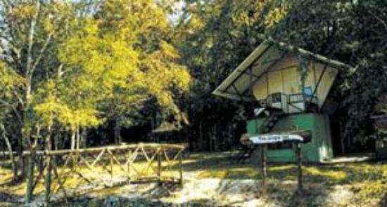 Bamboo Grove : Jungle Inn one room acco