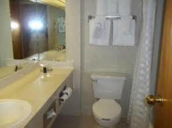 Embassy Suites by Hilton Williamsburg: Bathroom